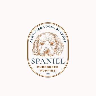 Certyfikowany hodowca psów odznaka ramki lub szablon logo ręcznie rysowane spaniel szczeniak twarz szkic z retro t...