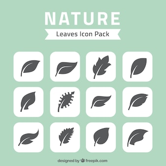 Charakter, liści, ikony pack