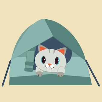 Charakter słodkiego kota w namiocie.