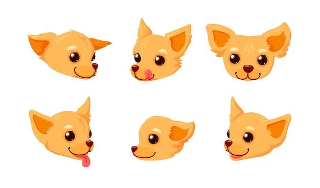 Chihuahua uśmiechnięta twarz z językiem głowa szczeniaka na białym tle