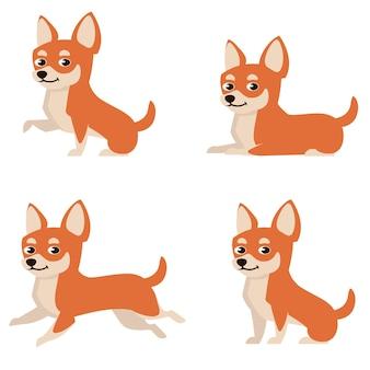 Chihuahua w różnych pozach. ładny pies w stylu cartoon.
