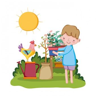 Chłopiec podnosi houseplant z półką i kogutem