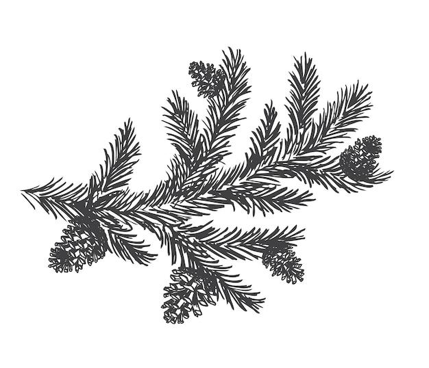 Choinka i sosny z ręcznie rysowanymi szyszkami