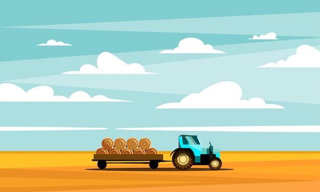 Ciągnik transportuje siano w przyczepie przez złote pola.