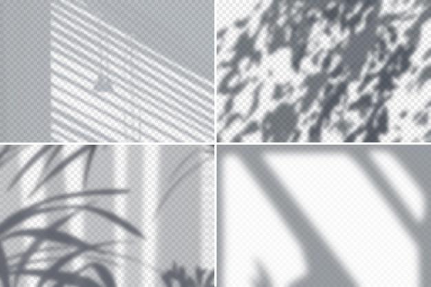 Cień liści i żaluzji na białej ścianie realistyczny zestaw na białym tle ilustracji