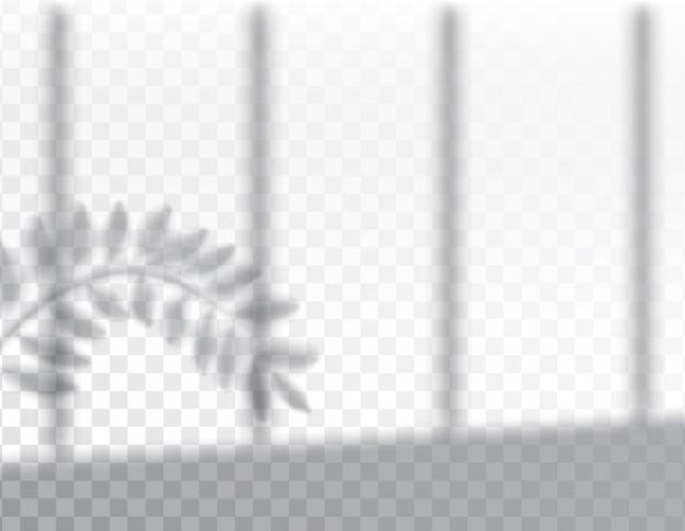Cień liści roślin na efektach nakładania
