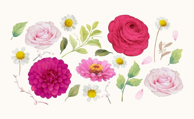 Clipartów kwiaty akwarela elementy ciemnoróżowych kwiatów