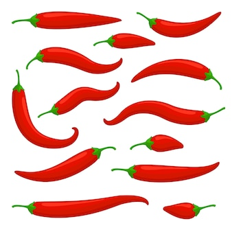 Closeup red chilly pepper set hot red chili peppers