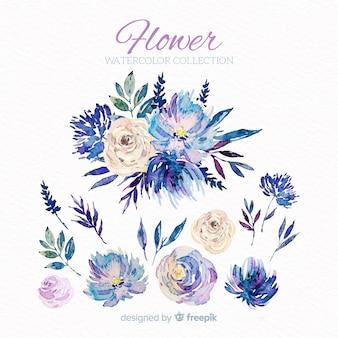 Collectio kwiatów i liści