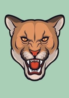 Cougar wściekła twarz, puma concolor