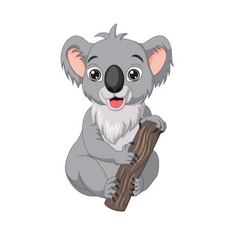 Cute baby koala kreskówka na gałęzi drzewa