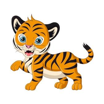 Cute baby tygrys kreskówka na białym tle