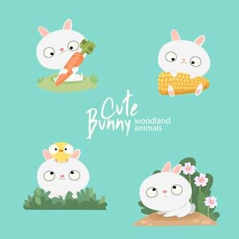Cute bunny woodland animals