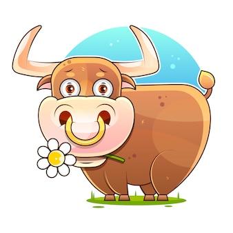 Cute cartoon bull stockowa ilustracja na białym tle. dekoracja