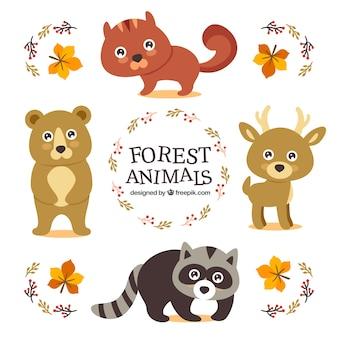 Cute dzikich zwierząt z jasnymi oczami