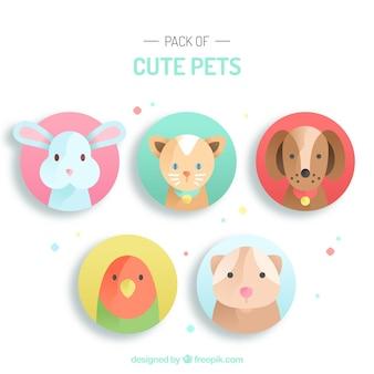 Cute kolekcja uroczych zwierząt domowych