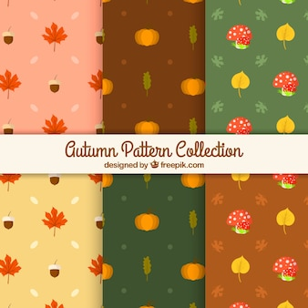 Cute kolekcji wzorców z liści jesienią