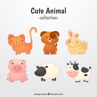 Cute kolekcji z różnych szczenięta