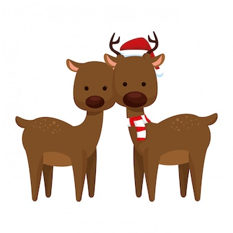 Cute para reniferów christmas znaków