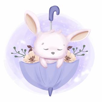 Cute rabbit sleepy on parasol