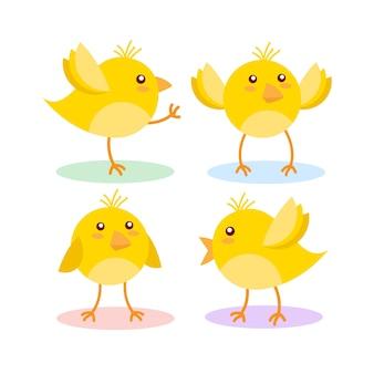 Cute żółty kurczak na białym