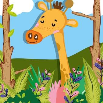 Cute żyrafa
