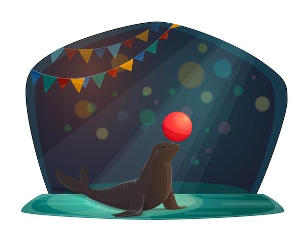Cyrk foka równoważenia z czerwoną piłkę na arenie
