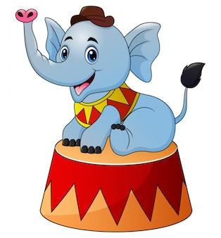 Cyrkowy słoń kreskówka na scenie