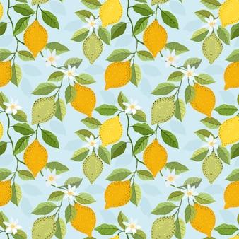 Cytryna owoce tło wzór.