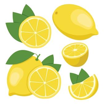Cytrynowy. kolekcja całych i pokrojonych owoców cytryny