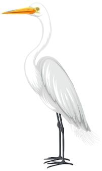 Czapla biała w stylu kreskówki na białym tle