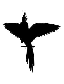 Czarna sylwetka dorosłej papugi normalnej szarej nimfy siedzącej na gałęzi i trzepoczącej skrzydłem