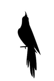 Czarna sylwetka urocza dorosła papuga normalnej szarej nimfy siedzącej na ilustracji wektorowych gałęzi