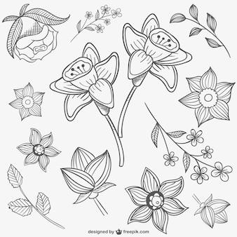 Czarne i białe kwiaty ilustracje