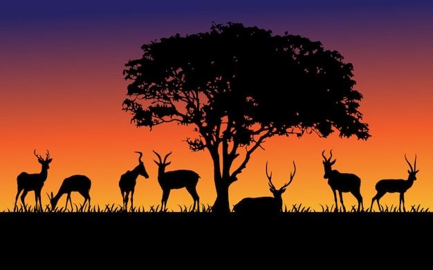 Czarne sylwetki dzikich zwierząt