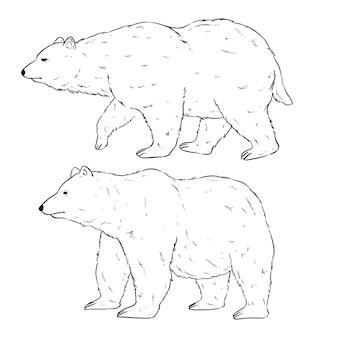 Czarno-białe niedźwiedzie polarne z ręcznie rysowanym lub szkicowanym stylem
