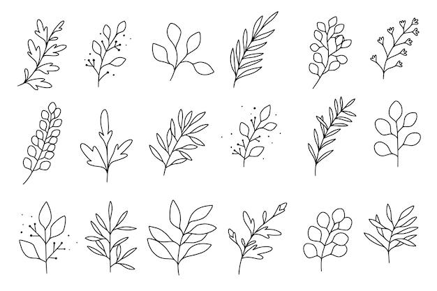 Czarno-białe ręcznie rysowane liście