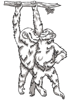 Czarno-biały ilustracja wektorowa małpa. symbole chińskiego nowego roku