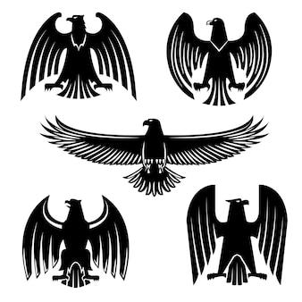 Czarny orzeł, jastrząb lub sokół heraldyczny symbol zestaw ilustracji