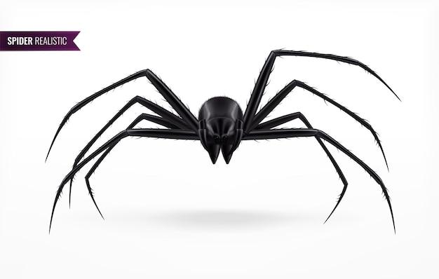 Czarny pająk streszczenie ilustracja