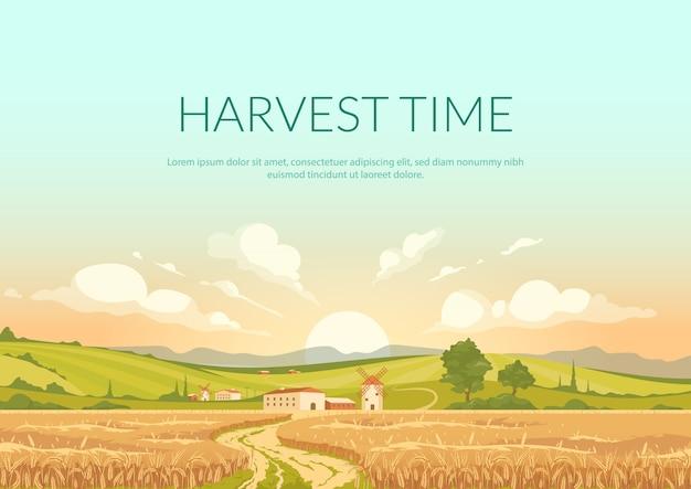 Czas żniw plakat płaski wektor szablon. teren rolniczy z dojrzałymi uprawami. krajobrazy wiejskie o zachodzie słońca. broszura, broszura projekt koncepcyjny jednej strony z ilustracjami.