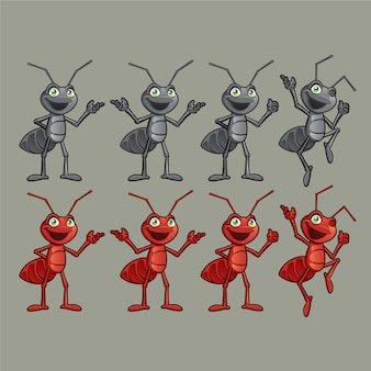 Czerwona i czarna mrówka różne postacie