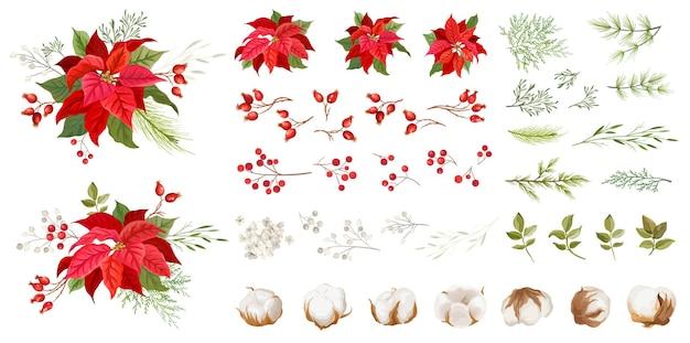 Czerwona poinsecja wektor boże narodzenie kwiaty. rośliny zimowe, elementy kwiatowe ilustracja koncepcja akwarela. tradycyjny świąteczny zestaw zielonych liści i czerwonych płatków, ostrokrzew, gałązki sosny, kwiaty bawełny