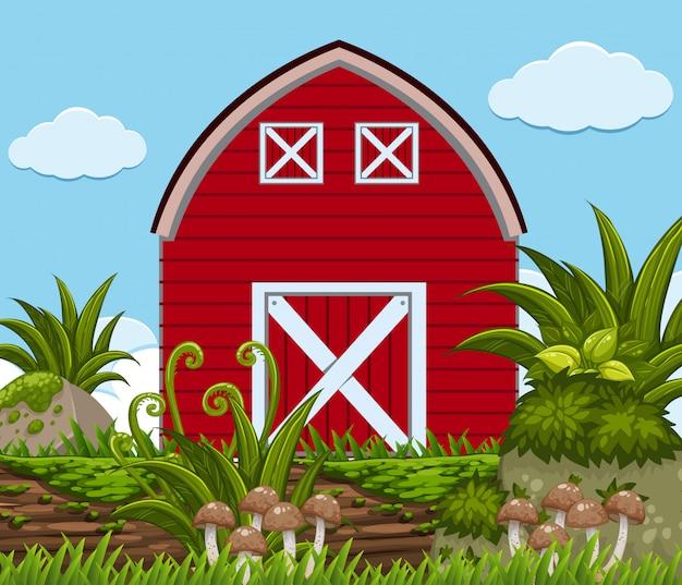 Czerwona stodoła z roślinami