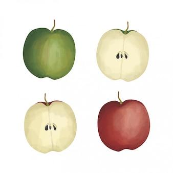 Czerwone i zielone jabłko w stylu przypominającym akwarele