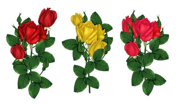Czerwone i żółte róże z zielonymi liśćmi