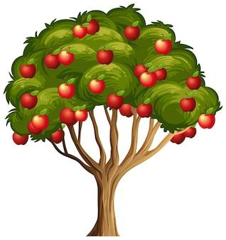 Czerwone jabłka na drzewie na białym tle