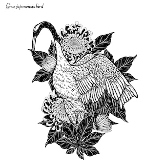 Czerwono-koronowany wektor żurawia pływające przez rysunek