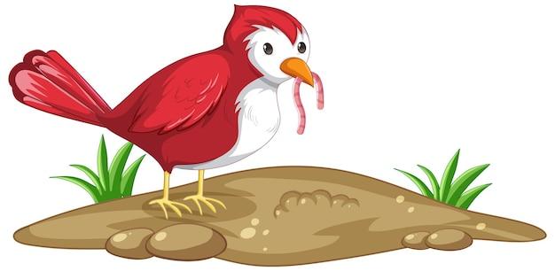 Czerwony ptak łapie robaka w stylu kreskówki na białym tle