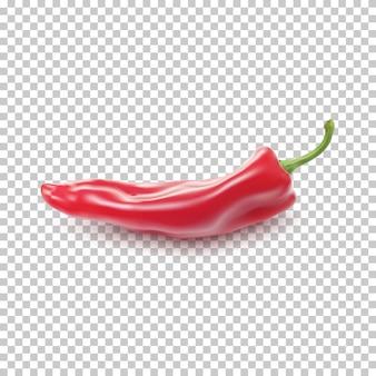 Czerwony realistyczny pieprz na przezroczystym tle